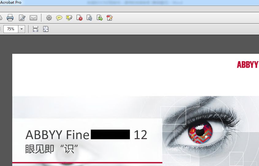 PDF副本
