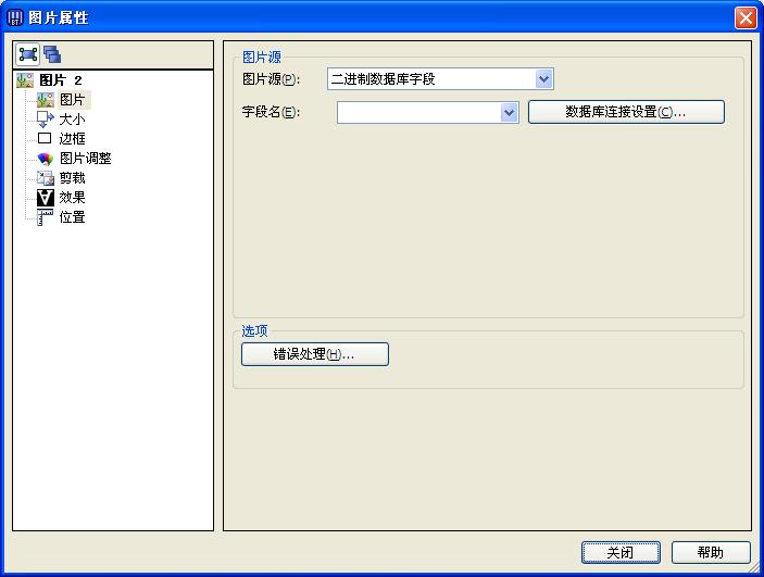二进制数据库字段