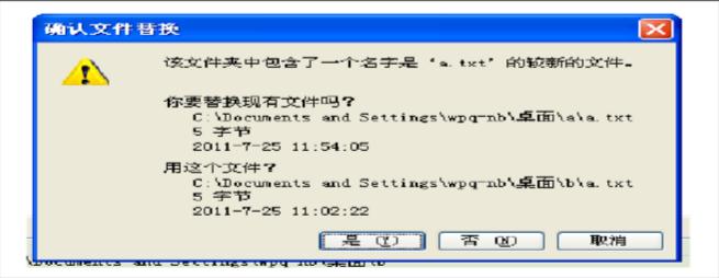 确认文件替换界面