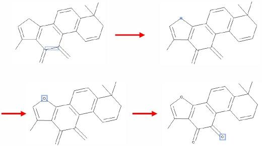 修改原子类型