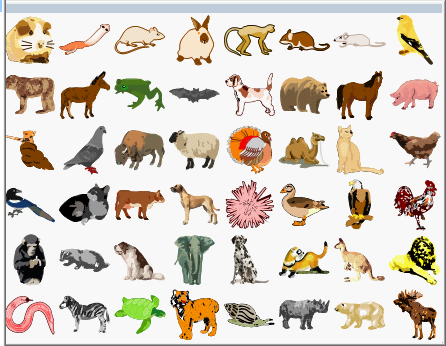 ChemBioDraw的动物模板