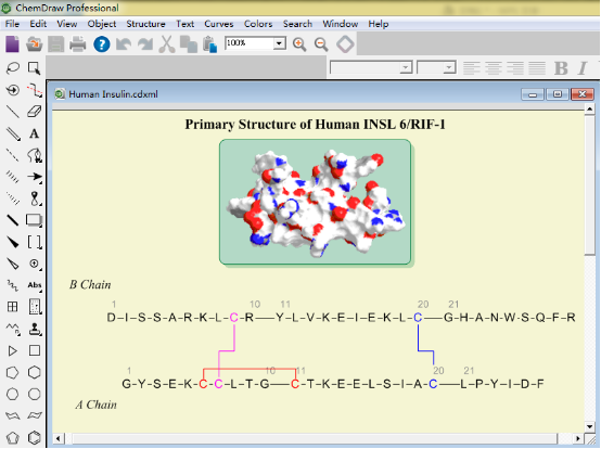 人类胰岛素结构分析