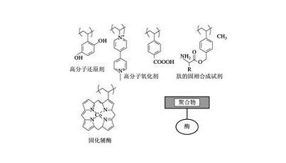 有机高分子材料