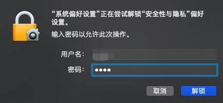 """输入密码解锁""""安全性与隐私"""""""
