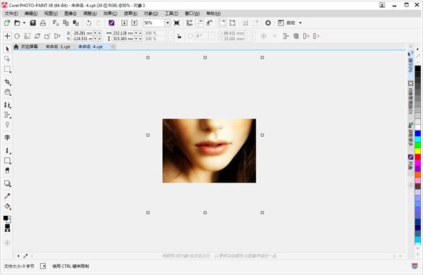在Corel PHOTO-PAINT中将裁剪区域扩展到原始图像外部