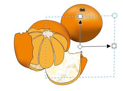 CDR画橘子