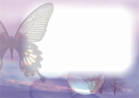 蝴蝶大头贴相框