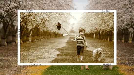 会声会影定格复古相机对焦拍摄