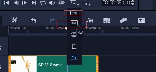 视频比例按钮