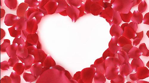 玫瑰爱心素材