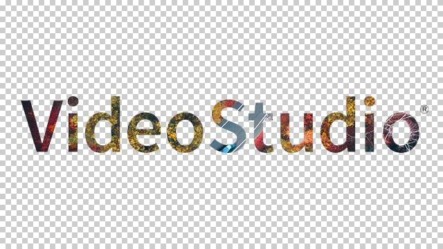 导出视频与透明背景