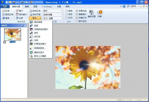 Hypersnap软件