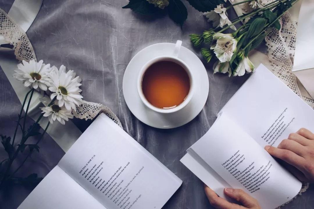 把阅读变成一次发现之旅