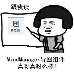 MindManager导图组件功能