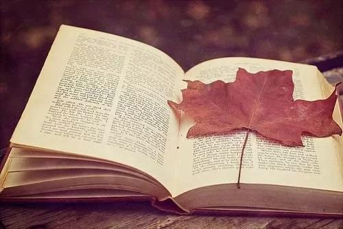 做思维导图笔记,让阅读更高效