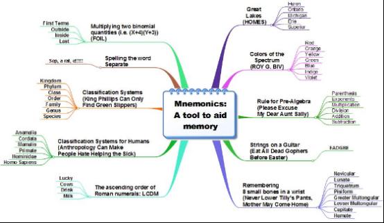 MindMapper结构图