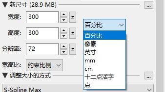 PhotoZoom新尺寸