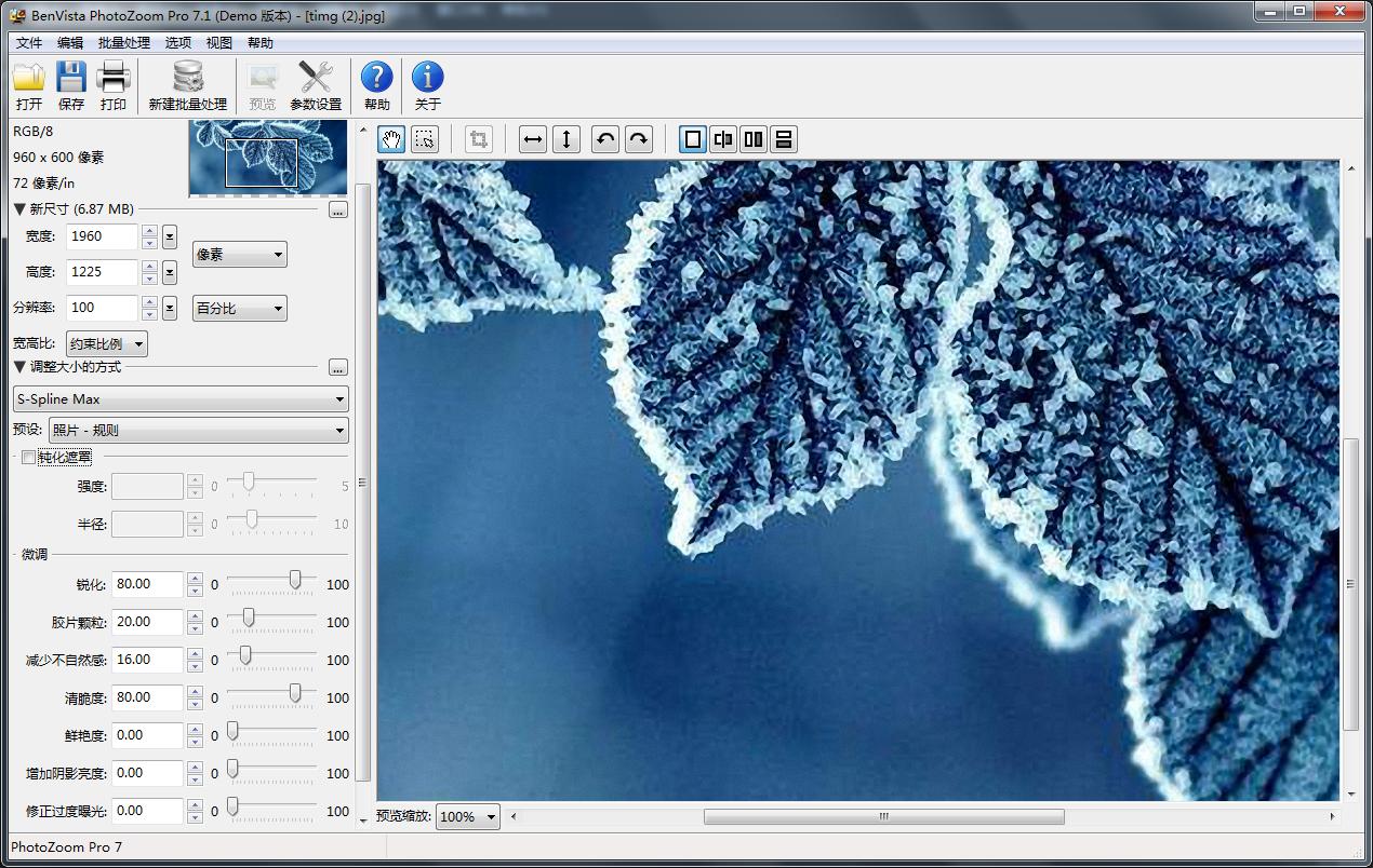 Photozoom提高图片品质
