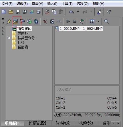 项目媒体窗口