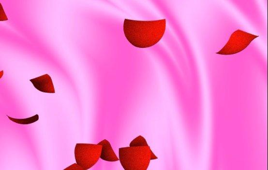 飄落花瓣視頻素材