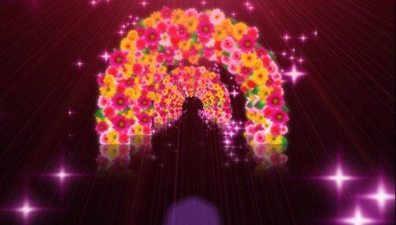 绚丽拱门花闪亮光线光效