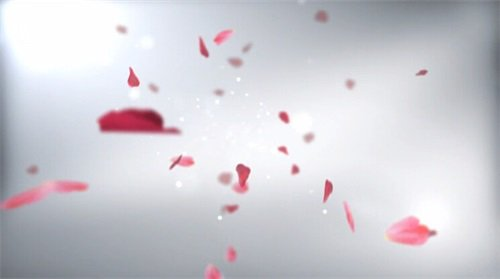 婚禮片頭視頻素材