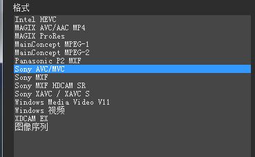 Vegas渲染器支持的格式