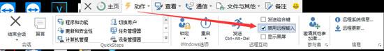 TeamViewer中禁用远程输入