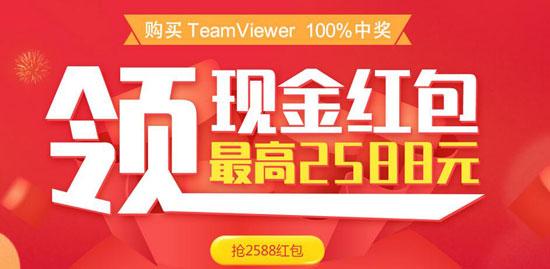 TeamViewer新年特惠活动