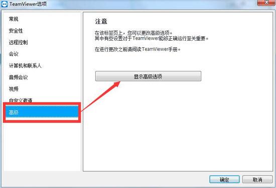TeamViewer高级选项界面