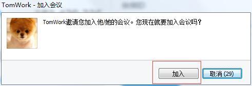 TeamViewer邀请信息