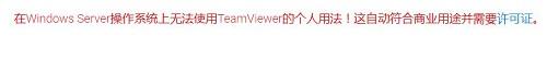 用于服务器的TeamViewer
