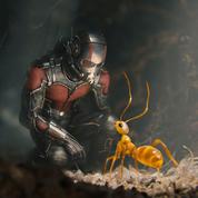 ZBrush用来帮助创造漫威电影《蚁人》中的蚂蚁