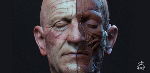精细到皮肤毛孔--或者更精确