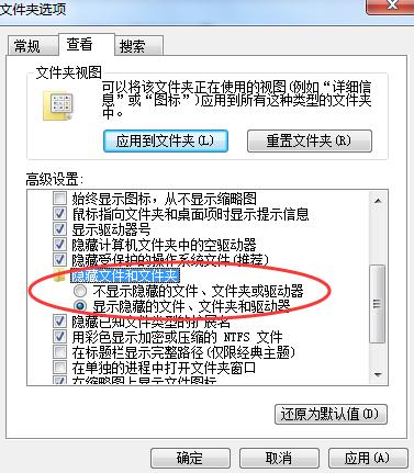 显示隐藏的文件和文件夹