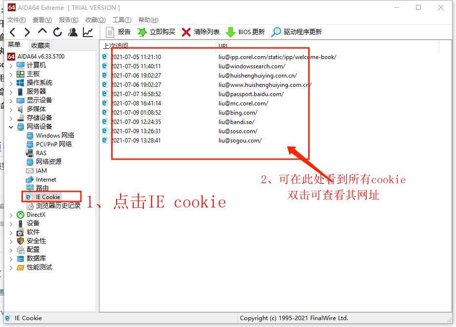 图2:点击IE cookie