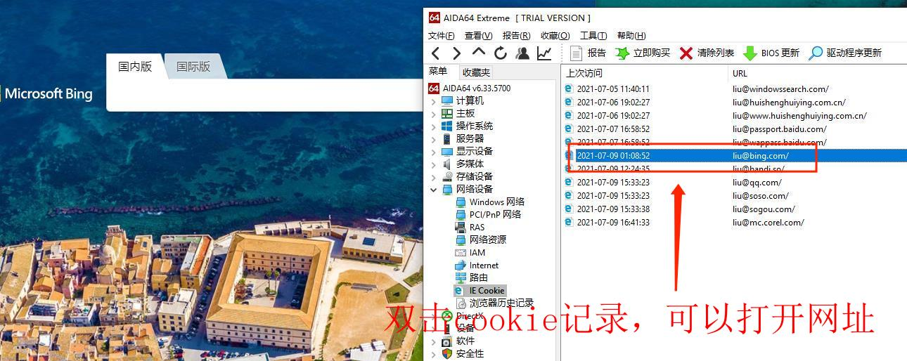 图3:双击cookie记录,可以打开网址