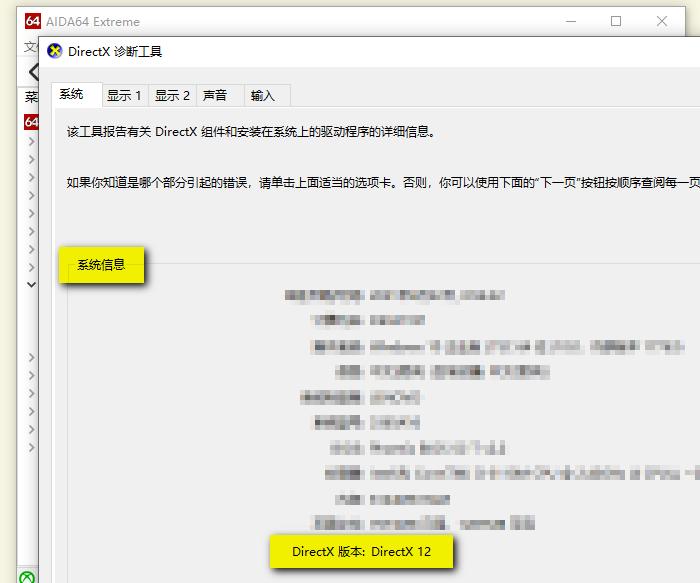 """DirectX诊断工具的""""系统""""页"""