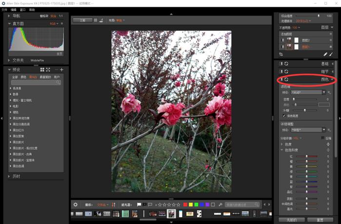 輕松使用Alien Skin Exposure X4顏色功能使照片只突出一種顏色