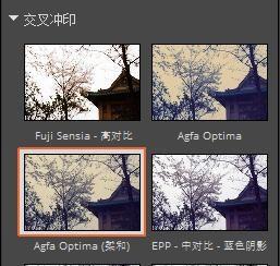 图 2:交叉冲印-Agfa Optima (柔和)
