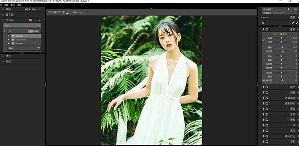 Exposure X4汉化版