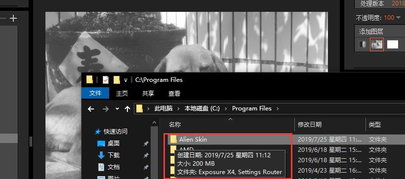 圖片5:Alien Skin Exposure的大小