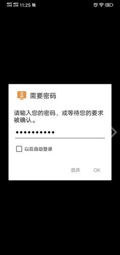 图2:输入自动访问密码