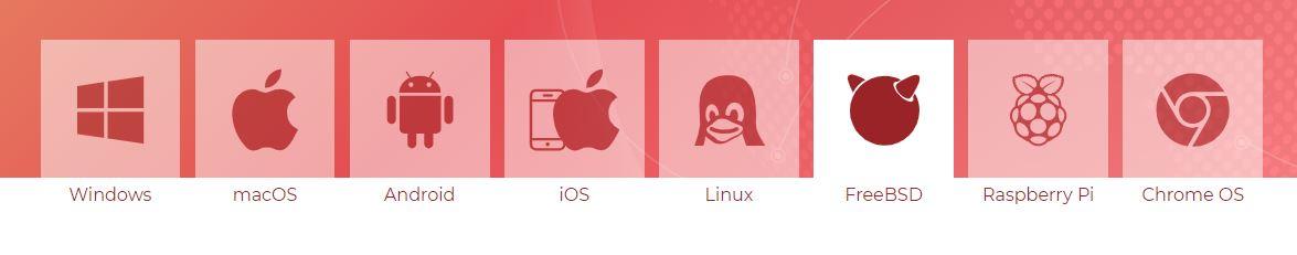 图3:Anydesk支持的系统与软件