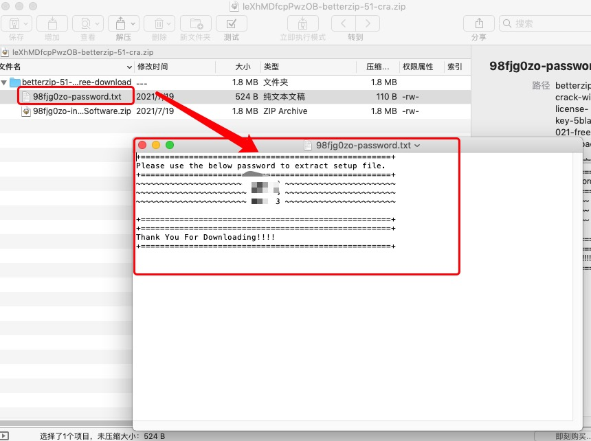 图3:文件预览界面