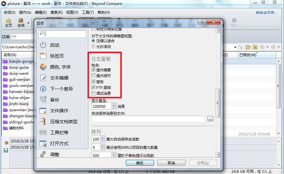 Beyond Compare文件夹比较工具—选项窗口图例