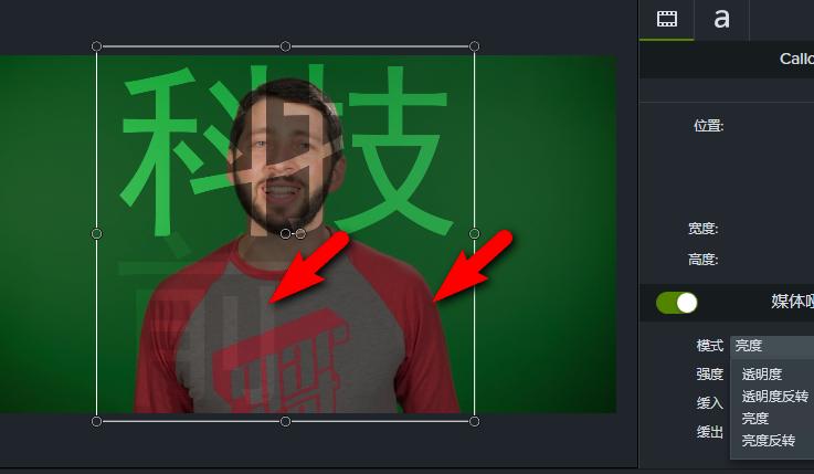 """图5:""""亮度""""模式"""