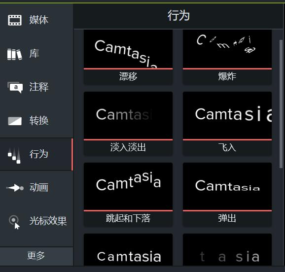 图片2:Camtasia行为小窗口