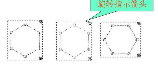 定位环己烷环
