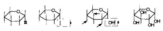OH原子标记